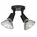 Capital Outdoor Ceiling Lights