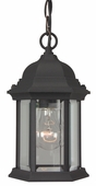 Exteriors by Craftmade (Z291-05) Hex Style 6.5 Inch Pendant in Matte Black & Clear Beveled Glass