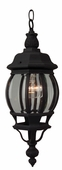 Exteriors by Craftmade (Z321-05) French Style 6.5 Inch Pendant in Matte Black & Clear Beveled Glass