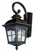 Chesapeake 2 Light Coach Lantern shown in Antique Rust by Trans Globe Lighting