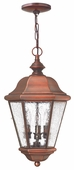 Hinkley Lighting (2262AP) Clifton Beach Outdoor Hanger in Antique Copper with Clear Seedy Bound Shade
