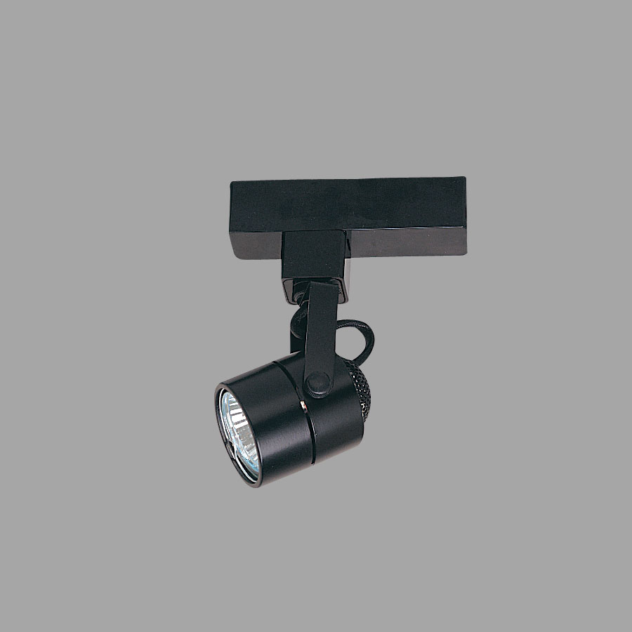 Cylinder H Style 20W 50W Low Voltage Track Fixture With Adapter By Nora Light