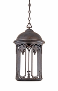"Designers Fountain (31034-OB) Barrington Exterior 11"" Dark Sky Hanging Lantern in Old Bronze"