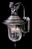 Framburg Lighting - Carcassonne Exterior in Iron - FBG-8505