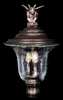 Framburg Lighting - Carcassonne Exterior in Iron - FBG-8509