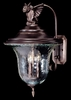 Framburg Lighting - Carcassonne Exterior in Siena Bronze - FBG-8508