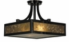 Framburg Lighting - Evolution  Flush Mounts and Semi-Flush Mounts in Ebony - FBG-1417