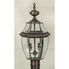 Newbury- Americana Style Newbury Outdoor Fixture In Aged Copper Finish From Quoizel Lighting- NY9042AC