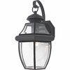 Newbury- Americana Style Newbury Outdoor Fixture In Mystic Black Finish From Quoizel Lighting- NY8316K