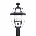 Newbury- Americana Style Newbury Outdoor Fixture In Mystic Black Finish From Quoizel Lighting- NY9043K