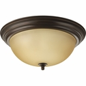 Progress Lighting (P3926-20T) 15-1/4 Inch Flush Mount
