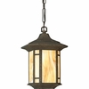 Progress Lighting (P5528-46) Arts and Crafts 1 Light Outdoor Hanging Lantern in Weathered Bronze