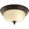 "Progress Lighting (P3924-20EUL) 11-3/8"" Flush Mount"