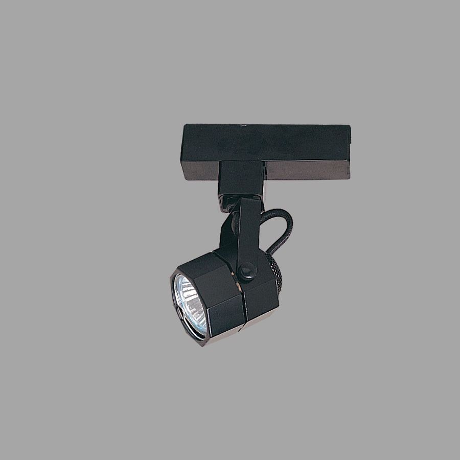 Studio H Style Low Voltage Track Fixture With Integral