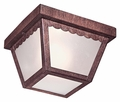 The Great Outdoors- Outdoor Ceiling Lights