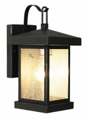 Traditional Seeded 1 Light Coach Lantern shown in Weathered Bronze by Trans Globe Lighting