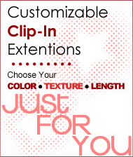 Customizable Clip-In Extentions