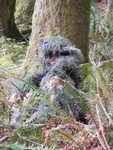 Kids Ghillie Set Woodland