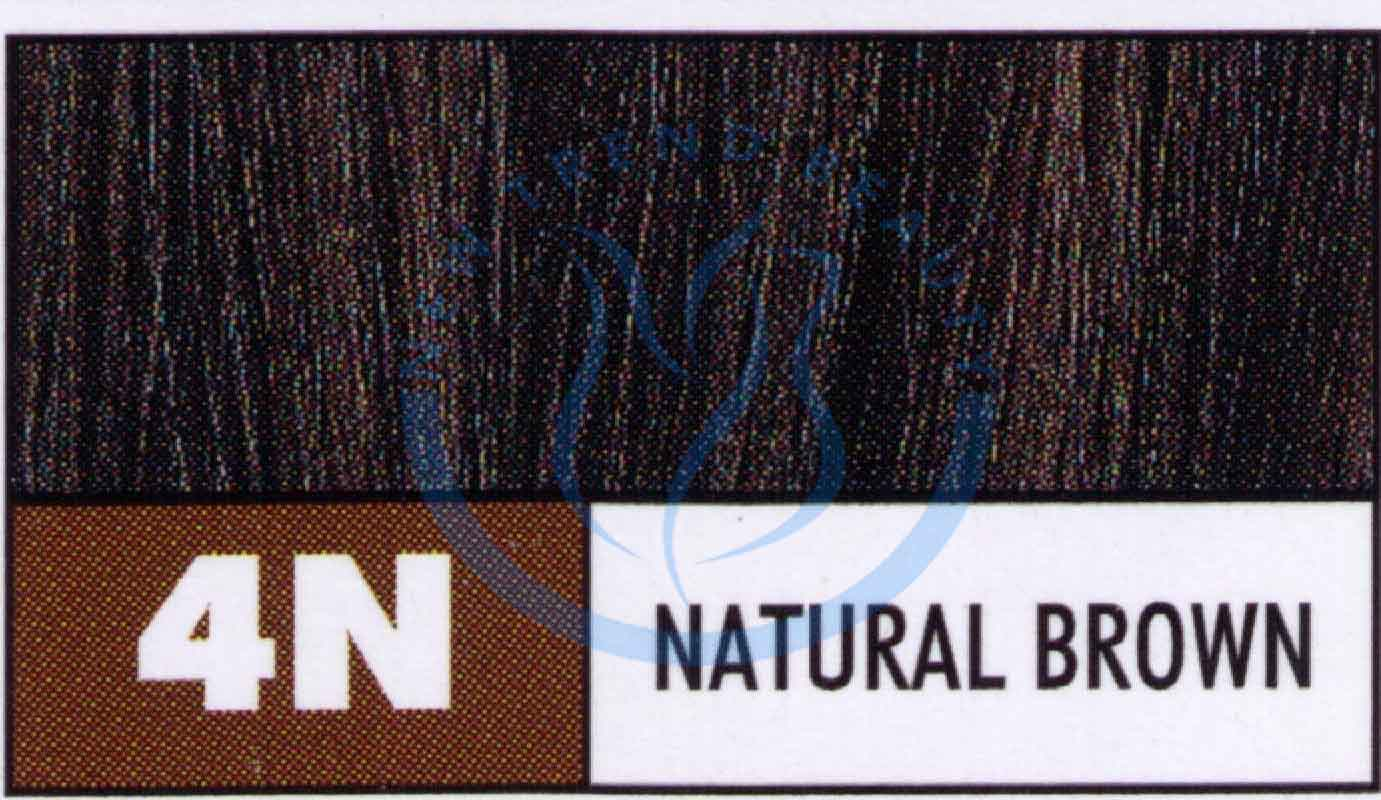 Paul mitchell brown hair color chart dfemale beauty tips skin care paul mitchell the color permanent cream hair color 3oz 4n brown nvjuhfo Gallery