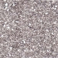 Clear Silver Peanut 2x4mm - pkg of 10 grams