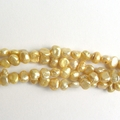 Freshwater Pearls Gold 5-6mm- 16 inch Strand
