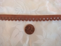 10 yards Light Brown Picot Elastic Trim 7/16 W