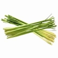 Lemongrass Essential Oil   .5 oz bottle