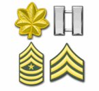 Army Rank Insignia Decals