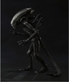 Alien Big Chap S.H.Monsterarts figure pre-order