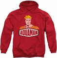 Aquaman pull-over hoodie Sign adult red