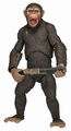 Caesar action figure Dawn Planet of the Apes pre-order