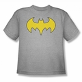 DC Comics youth teen t-shirt Bat Girl Logo silver