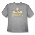 DC Comics youth teen t-shirt Hawkman Fly By heather