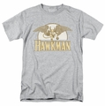 Hawkman Fly By mens t-shirt