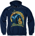 Nightwing pull-over hoodie Moon adult navy