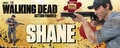 Walking Dead TV Series 2 Shane Walsh Update Edition Action Figure pre-order