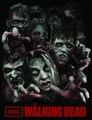 Walking Dead Walkers Fleece Blanket pre-order