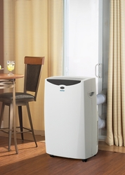 A Portable Air Conditioner Is Conveniently Cool