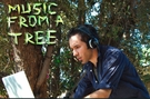 Music from Trees