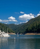 Nov 2010 - March 2011 <p> Shasta-Trinity National Forest</p>