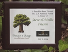 Option #1  Personalized Tree Gift in Recycled Frame