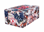 Boston Red Sox MLB Souvenir Ticket Photo Box
