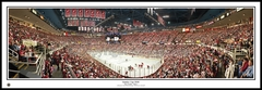 Detroit Red Wings Stanley Cup Champions 2008 Panoramic Photo