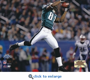 Super Bowl XXXIX Terrell Owens - Philadelphia Eagles