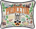 Embroidered Princeton University Library Collegiate Pillow