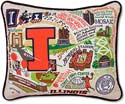 Handmade University Of Illinois Embroidered Pillow