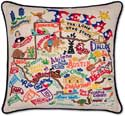 Handmade Embroidered Texas Geography Pillow