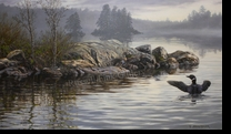 MILLER:  LOON POINT