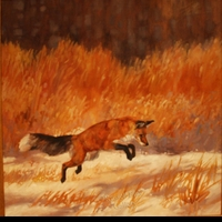 "ST. CLAIR: JUMPING FOX</a> <img src=""http://edit.store.yahoo.com/I/yhst-53343112752519_1792_1103024"">"