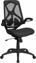 High Back Transparent Black Mesh Executive Swivel Chair with Adjustable Lumbar,2-Paddle Control and Flip-Up Arms [HL-0013T-GG]